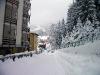 Nevicata - 04-01-2008 - 015