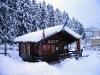 Nevicata - 04-01-2008 - 020